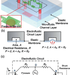 illustration of the pdms microfluidic system with an integrated electrofluidic circuit for pressure sensing  [ 850 x 1310 Pixel ]