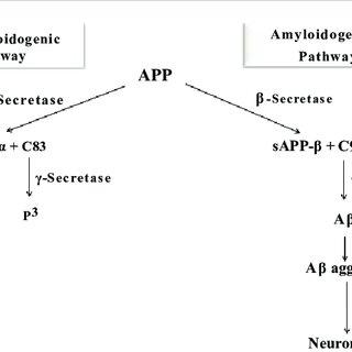 (PDF) Pathogenesis of Alzheimer's Disease