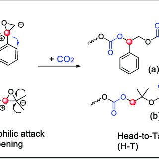 The curing reaction of CO 2 /glycidyl methacrylate