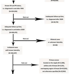 flow diagram of inclusion criteria and exclusion criteria the inclusion criteria are presented as follows [ 850 x 1506 Pixel ]