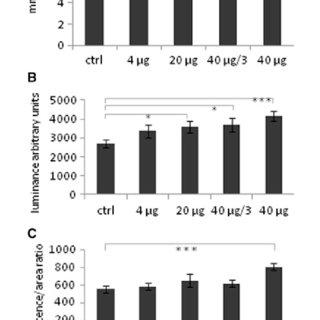 (PDF) Experimental Stimulation of Bone Healing with