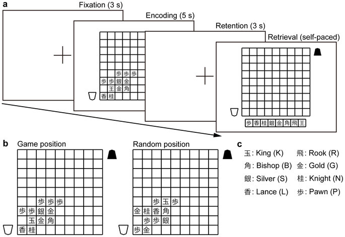 Experimental design. (a) Visual short-term memory task