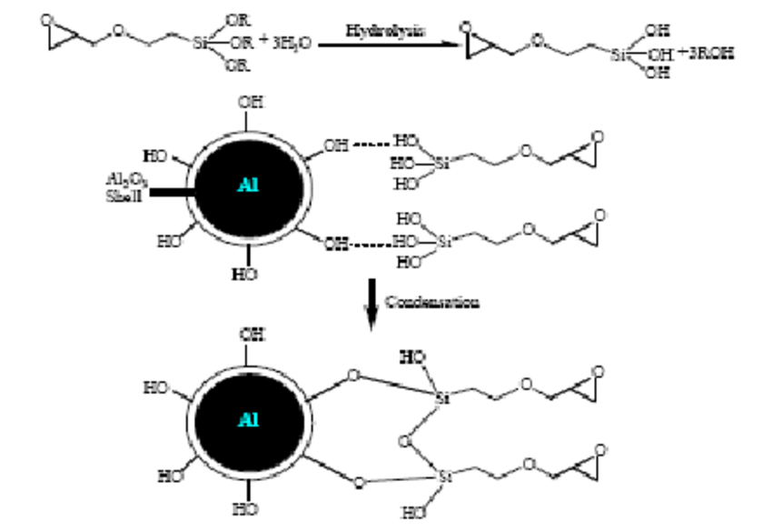 3 Schematic showing the reactions of silane coupling agent