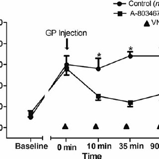 Effects of VNS on the PR interval. Compare the marked