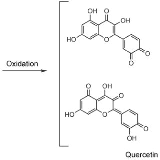 (PDF) In situ Spectroelectrochemical Study of Quercetin