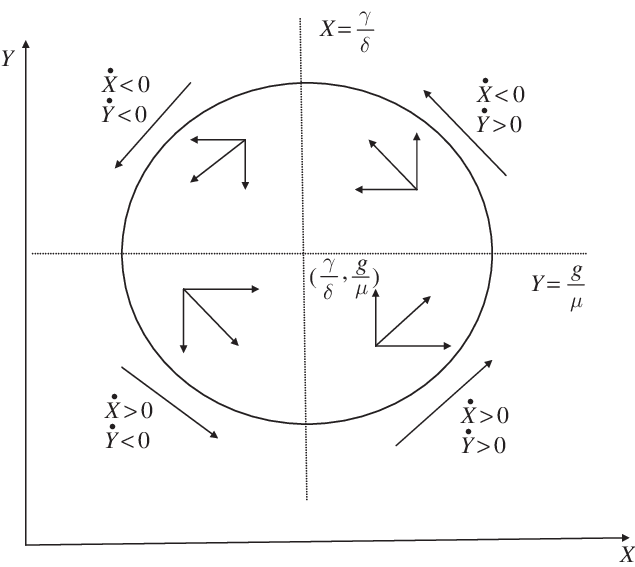 The phase diagram of the Lotka–Volterra predator– prey