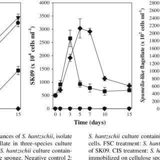 (PDF) Use of immobilized algicidal bacteria to control