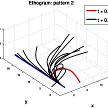 A spatio-temporal profile of an extension movement shown