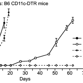 DCs from B6 mice were co-cultured with P29mtB6 or