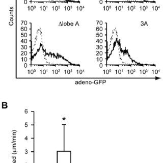 (A, B) FRET analyses for Rac activation in BW5147α–β