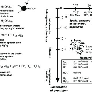(PDF) Chemical Processes in Heavy Ion Tracks