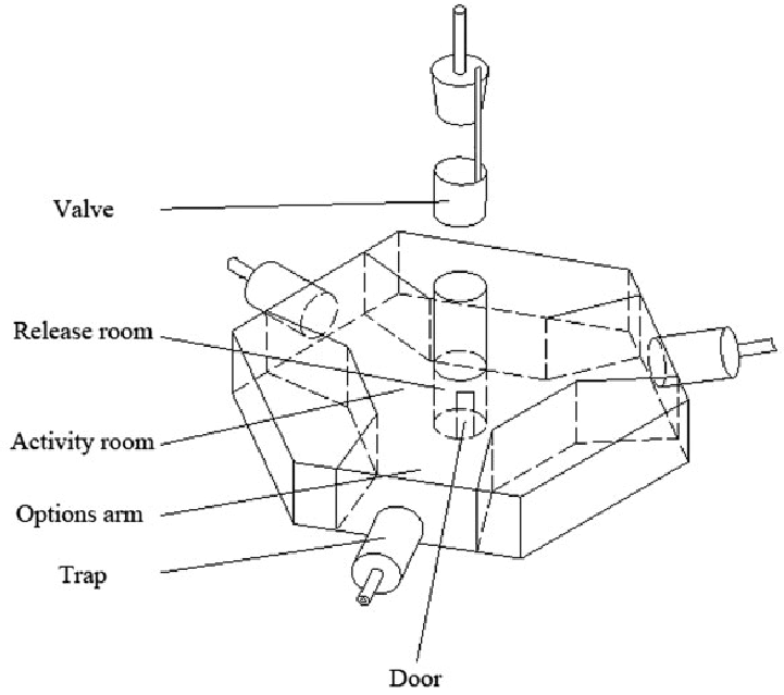 The schematic of a pentagonal acrylic apparatus which was