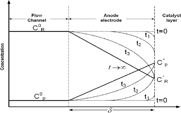 e Schematic variation of a fuel cell reactant and product