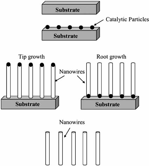 Fig. (1). Schematic illustration of a typical nanowire