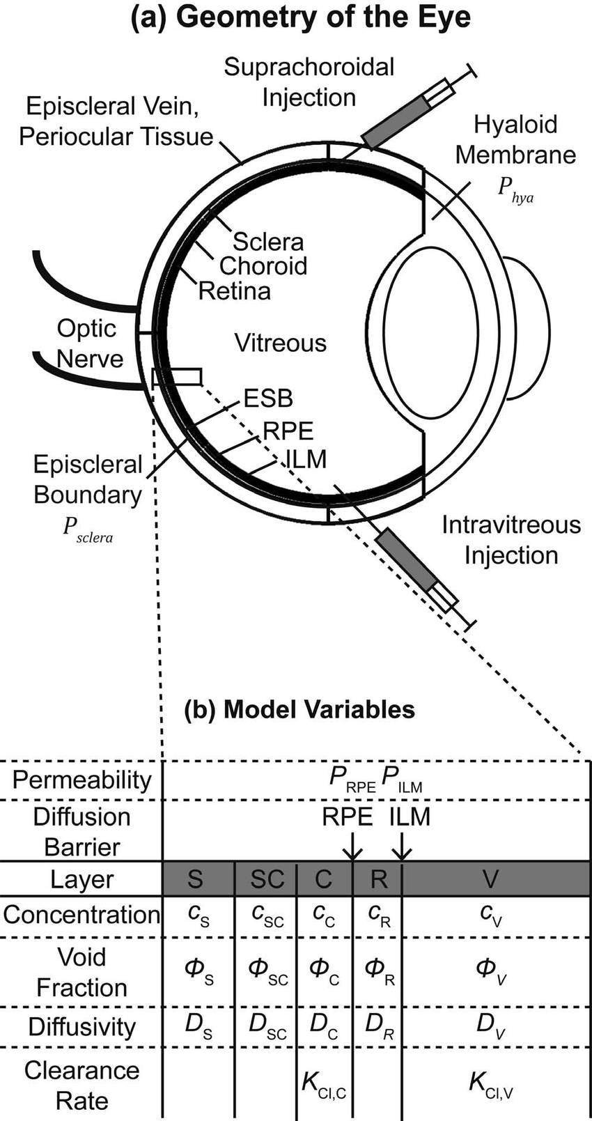 hight resolution of model diagram showing the geometry of the model a cross section of