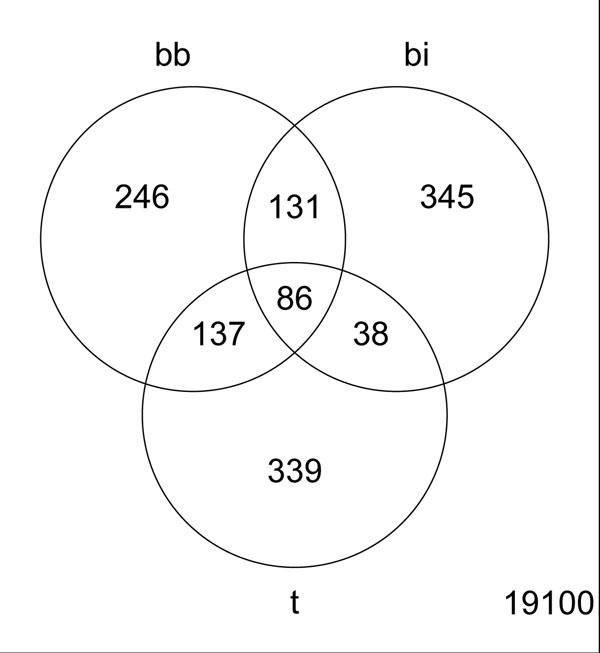 Venn Diagram comparison. The overlap of top 300 genes