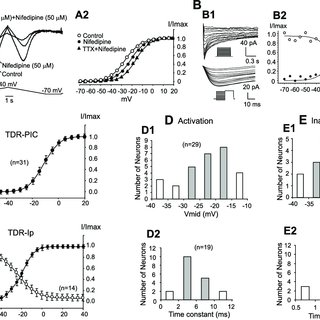 (PDF) Tetrodotoxin-, dihydropyridine-, and riluzole