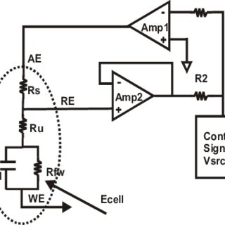 Block diagram of the electrochemical biosensor array