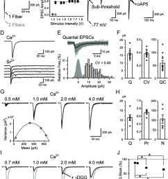 basic properties of rg synaptic transmission a rg rc epscs recorded with varying [ 850 x 1093 Pixel ]