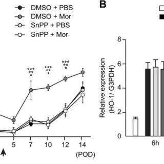 (PDF) Peripheral administration of morphine attenuates