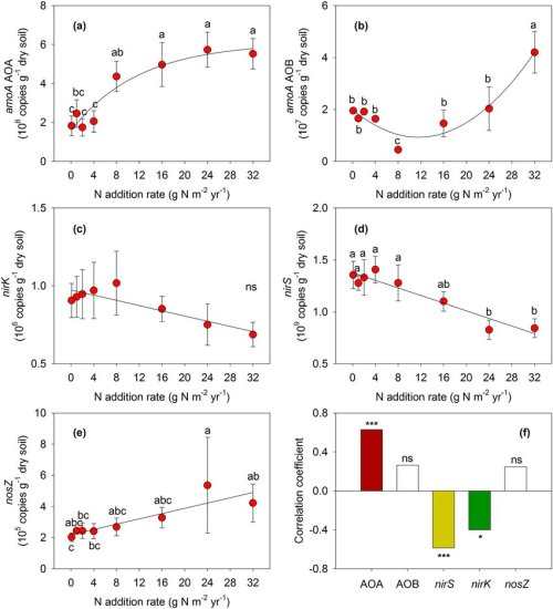small resolution of effects of n additions on amoa gene abundances of a aoa and b
