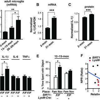 (PDF) SIRT1 Deficiency in Microglia Contributes to