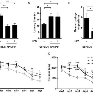 High-fat-diet-induced weight gain in APP/PS1 mice