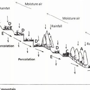 4 The vertical distribution of the forest/ village/terrace