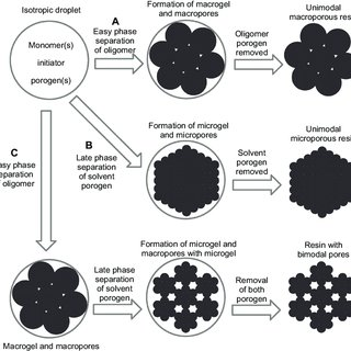 Porous microspheres. Note: Springer, Colloid and Polymer