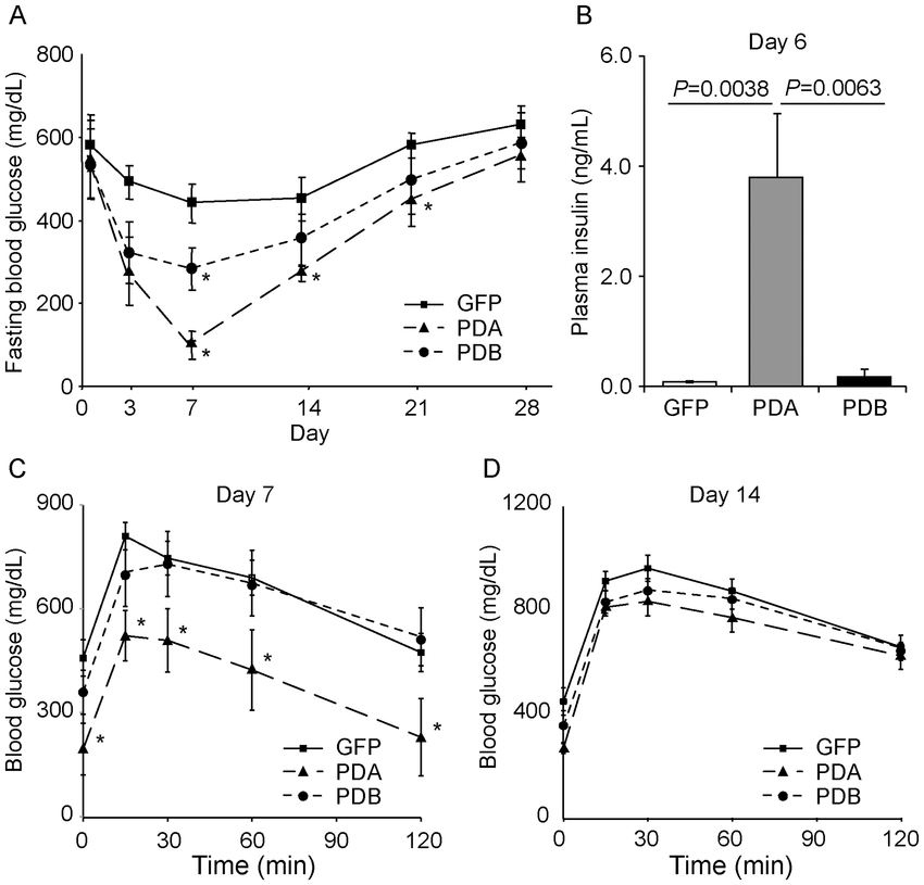 Pdx1, Neurod, and Mafa gene transfer in the liver