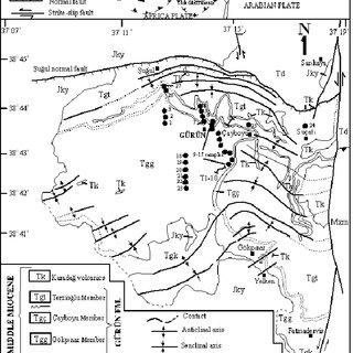 XRD patterns of investigated samples (A: aragonite, C