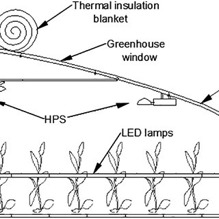 (PDF) Effects of Supplementary Artificial Light on Growth