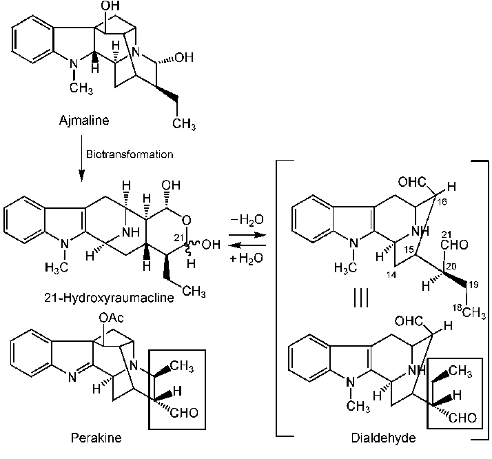 Generation of 21-hydroxyraumacline from ajmaline and