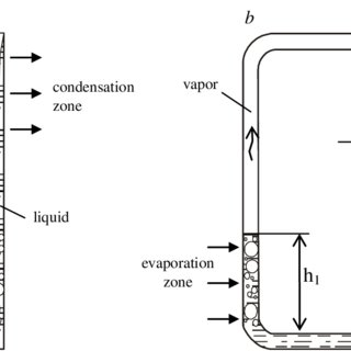 Scheme of a loop thermosyphon with an evaporator and