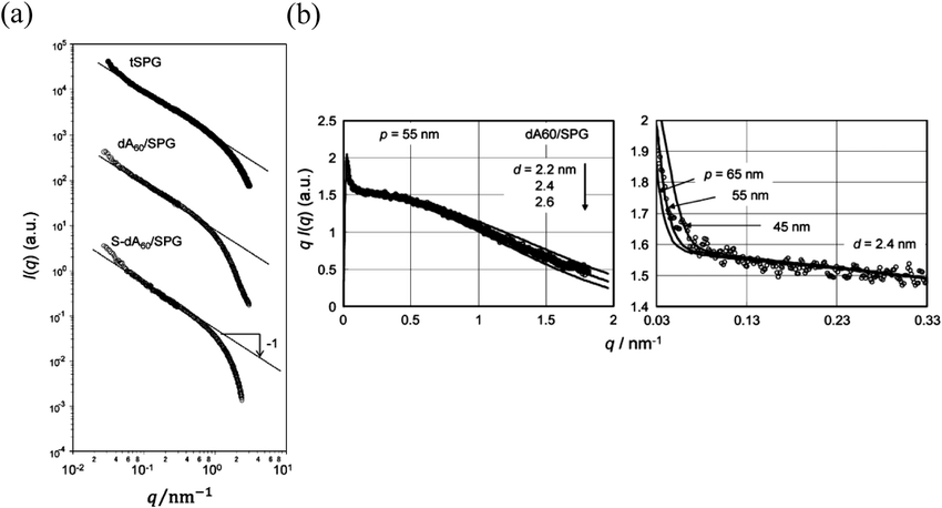 Small-angle X-rays scattering profiles after being