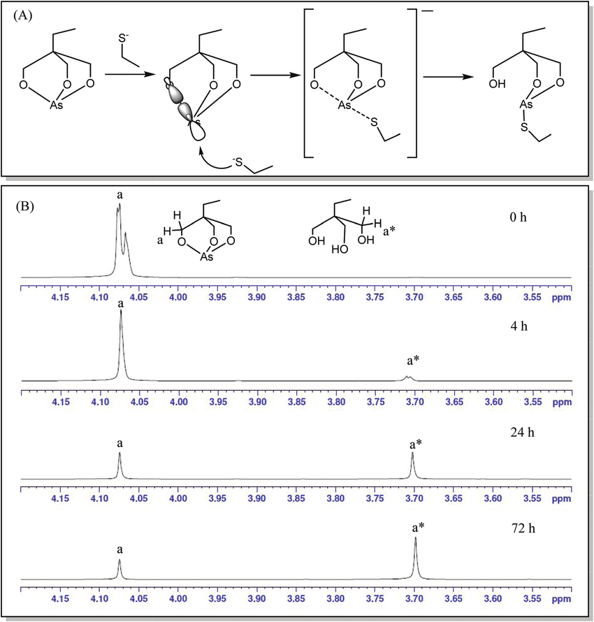 orbital diagram for arsenic network forward and backward pass a proposed mechanism of free thiol approaching the metal center from as o s nucleophile resulting in aso bond breaking