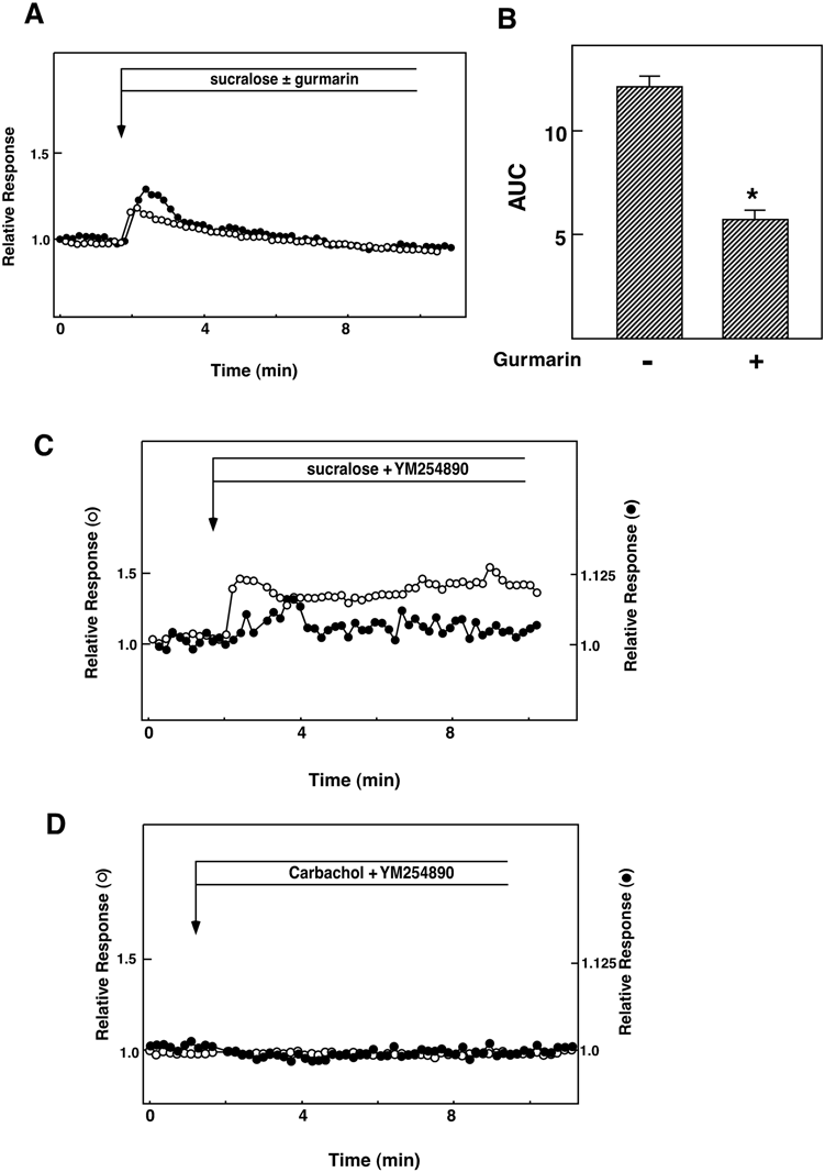 hight resolution of involvement of the sweet taste receptor in the action of sucralose a