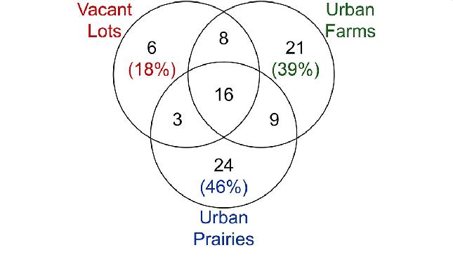 pilgrims vs puritans venn diagram speaker ohm wiring farming online of the beetle taxa found in vacant lots urban farms template for teachers