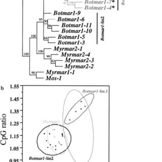 (PDF) Evolution of Full-Length and Deleted Forms of the