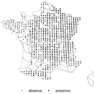 (PDF) Monitoring of the wintering and breeding Woodcock