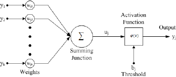 Schematic diagram of a neuron (left) and multiple