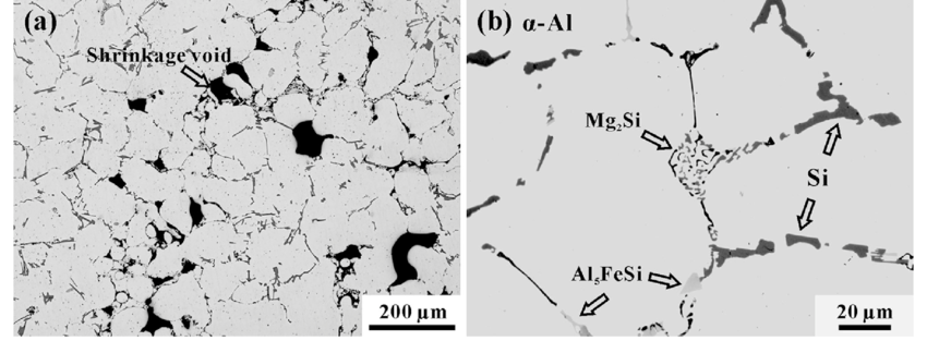 Microstructure of cast A356 alloy showing (a) shrinkage