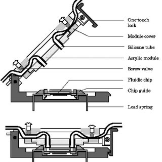Schematic diagrams showing the fabrication procedure for