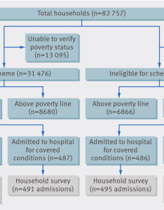 Flow chart of participants in study government health insurance for people below poverty line also rh researchgate