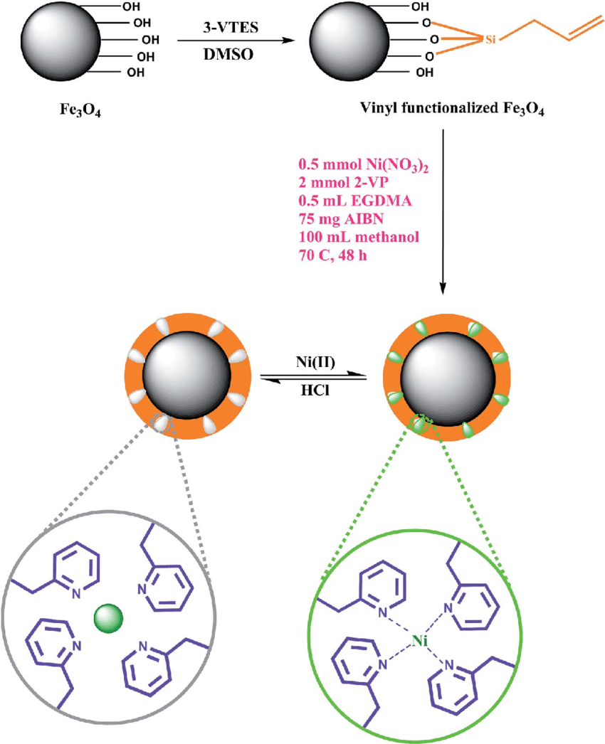 hight resolution of a schematic diagram for the synthesis process of magnetic ion imprinted polymer nanoparticles