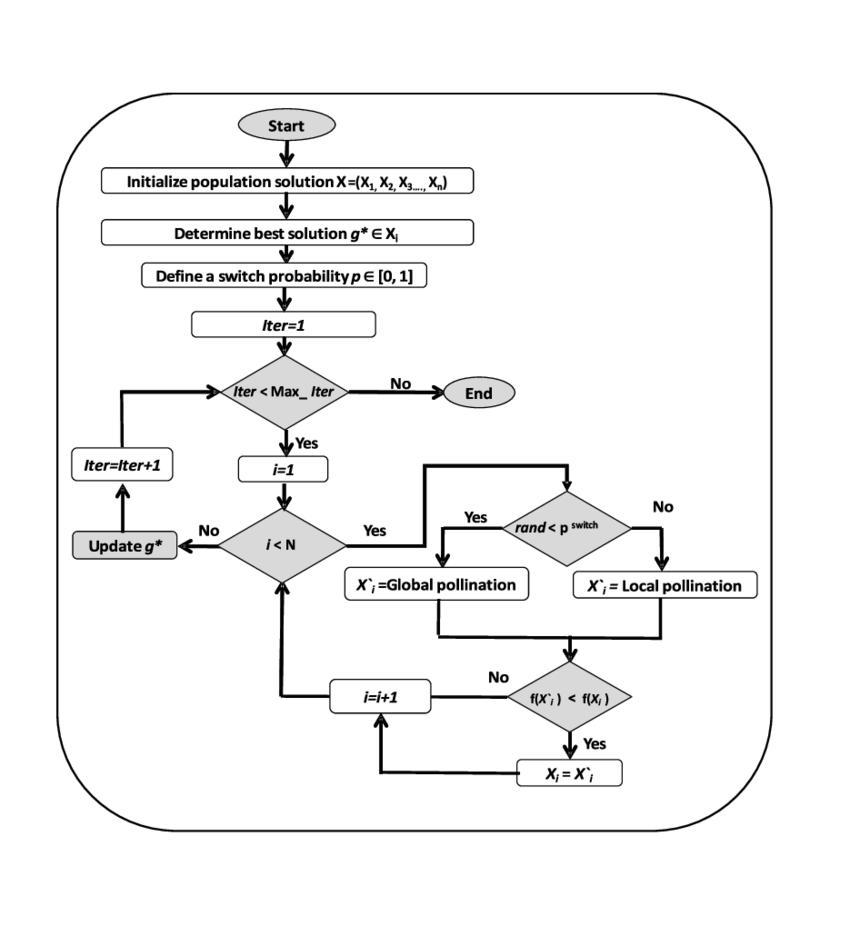 hight resolution of flower pollination algorithm flowchart