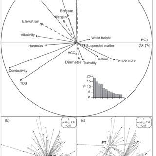 (PDF) Aquatic invertebrate fauna of wells in a tropical