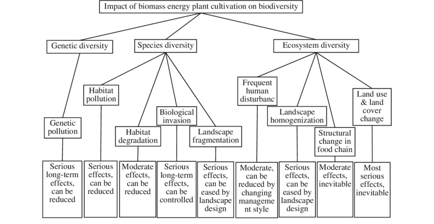 Impacts of biomass energy plant cultivation on