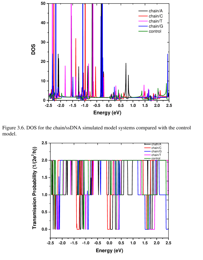 hight resolution of the transmission probability functions for the chain ssdna simulated model systems compared with