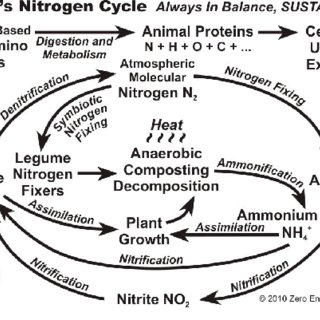 (PDF) Microbial Function on Climate Change